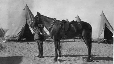 Major General Sir William Throsby Bridges holding the bridle of his favourite charger, Sandy.