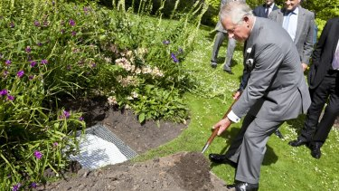 Prince Charles buries wool jumpers in the gardens of Clarence House.