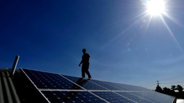 Solar's star is rising in Japan.