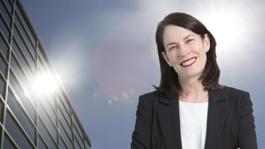 Wendy's new ceo Karin Hattingh has just been appointed to the role overseeing 250 outlets selling ice-creams and hotdogs in a highly competitive fast food market.