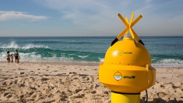 Sonar shark detection devices are to be trialled at five NSW beaches.