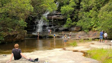 Somersby Falls is a popular picnic spot on the Central Coast