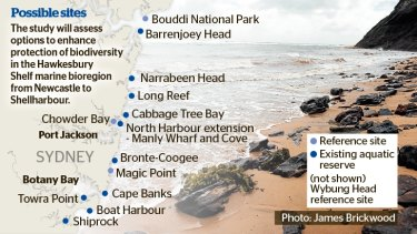 Possible sights for new marine protection parks.