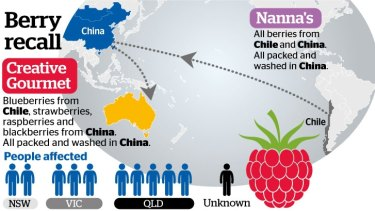 How berries get from the country of origin to your kitchen.