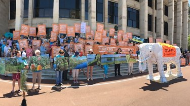 A protest against the Perth Freight Link at parliament in November.