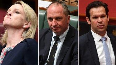 Referred to the High Court: Nationals Fiona Nash, Barnaby Joyce and Matt Canavan.