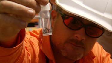 Justin Gibson, senior handler BioSecurity Queensland, holds a red fire ant sample.