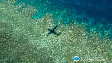The aerial survey plotted the health of some 800 reefs over 8000 km of flying.