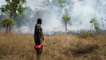 A ranger conducting fire management work.