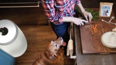 UNSW industrial design student Greta Saggus designed the Scraps Snacks appliance, which turns kitchen waste into pet food.