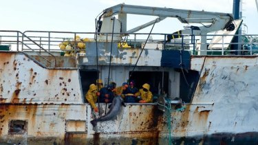 Fishers on the illegal fishing vessel Kunlun using gaffs drag aboard a large toothfish.