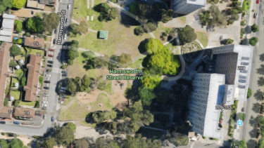 The park where the brawl took place.