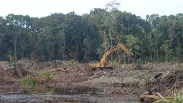 Recent increases in land clearing threaten Queensland's biodiversity.