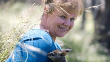 Learning from local wildlife: In 2005 with a wallaby joey.