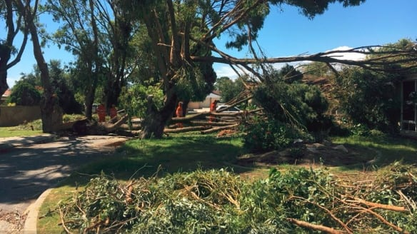 """""""Rockingham hit by wild weather this morning. Residents say it was like a mini tornado. Roofs off, trees collapsed and cameras down."""""""