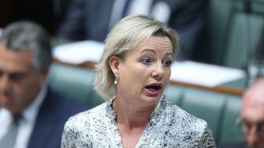 Health Minister Sussan Ley wants action within a fortnight on prostheses.