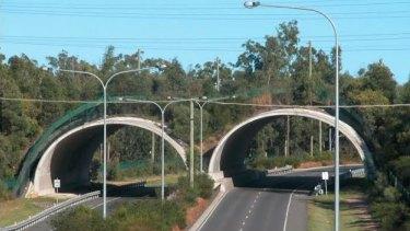 The smart mammal bridge over Compton Road at Kuraby.