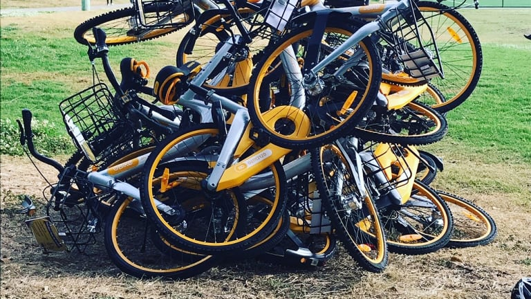 Ride sharing bikes at Waverley Oval, Bondi Road.