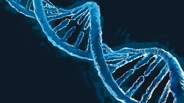 The discovery of the double-helix structure of DNA was the result of the pursuit in pure science.