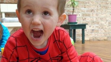 William Tyrrell went missing from his grandmother's home on September 12 last year.