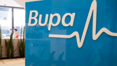 "The company admitted on Friday that an employee had ""inappropriately copied and removed some customer information"" at its Bupa Global division."