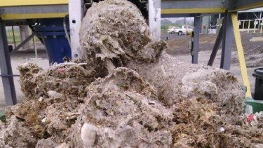 Fatbergs are created by a mixture of wet wipes, sewage, fat and oils.