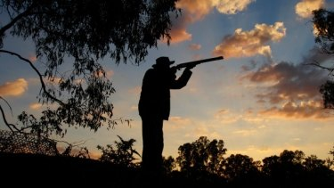 Some Labor members claim the decision to allow another duck hunting season leaves the party vulnerable to the Greens.
