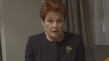 Pauline Hanson speaks about her meeting with Malcolm Turnbull in a video she posted on social media.