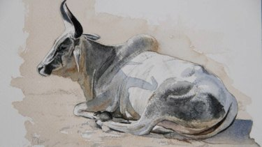 Bull painted by Melbourne artist Jason Roberts in Rajasthan, India.