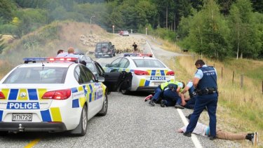 Police handcuff occupants of the car that was stopped by the sheep.