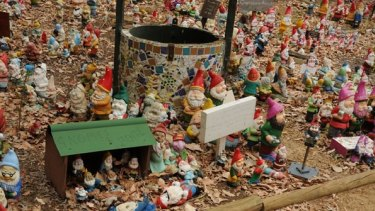 Thousands of gnomes have made their way to Dardanup.
