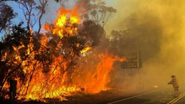 Hazard reduction burning in the Ku-ring-gai National Park north of Sydney in August.