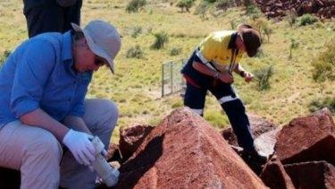 CSIRO field staff taking colour data on the Burrup Peninsula, as published in a CSIRO report.