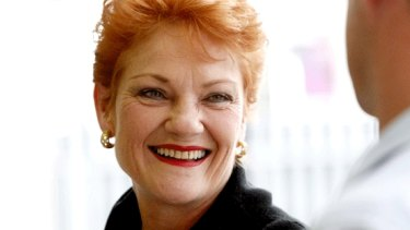 She's back: Pauline Hanson is set to fly on a personally emblazoned plane ahead of a Reclaim Australia rally.