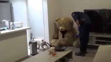 Police inspect the teddy bear.