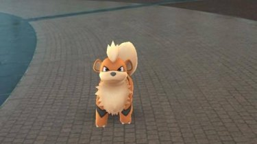 Pokemon have taken over our streets.