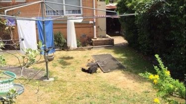 The sinkhole in the backyard of the Springvale South home.