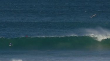 A shark, top right, breached during competition at J-Bay.