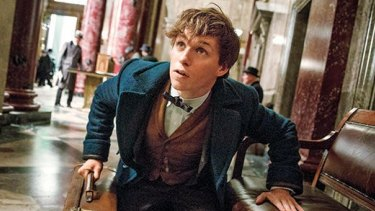 Animal magic ... Eddie Redmayne as Newt Scamander in JK Rowling's updcoming <i>Fantastic Beasts and Where to Find Them</i>.