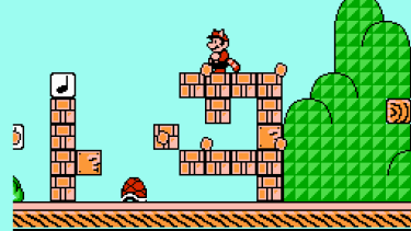 Mario's racoon form was just one of many transformations in the third game. He also became a frog and a tanuki.