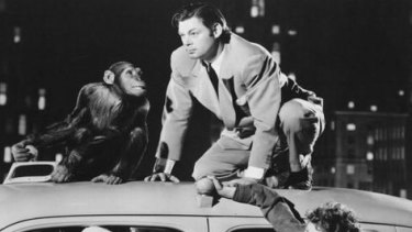 B-grade but brilliant ...  Johnny Weismuller starred as the King of the Jungle between 1932 and 1948. Here he is in <i>Tarzan's New York Adventure</i>.