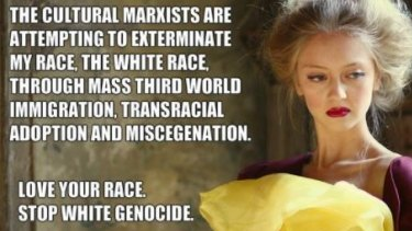 An alt-right meme referencing 'cultural Marxism', a debunked concept that flourishes online. The wording co-opts fears about demographic change in the world today.
