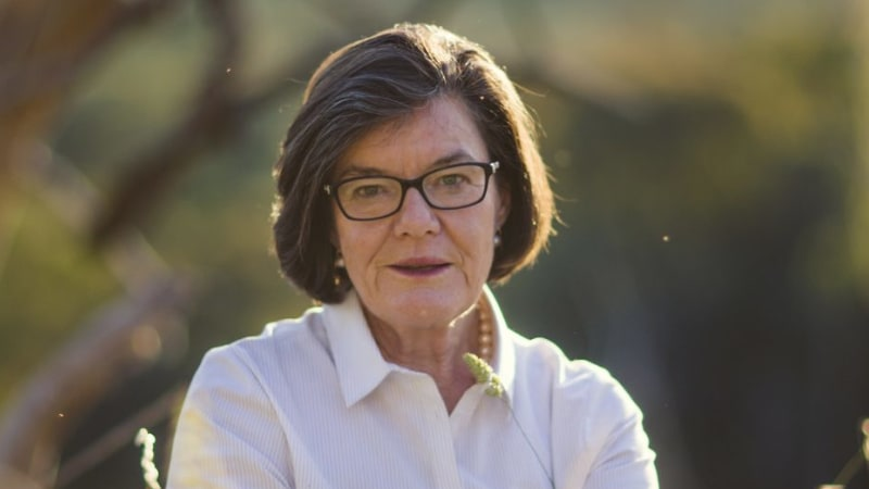 Extend Coalition 'city deals' to the regions: independent MP Cathy McGowan