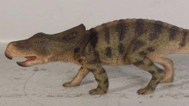 A protoceratops.