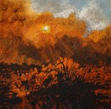 <i>Burning Blackall</i> reflects Mandy Martin's interest in fire.