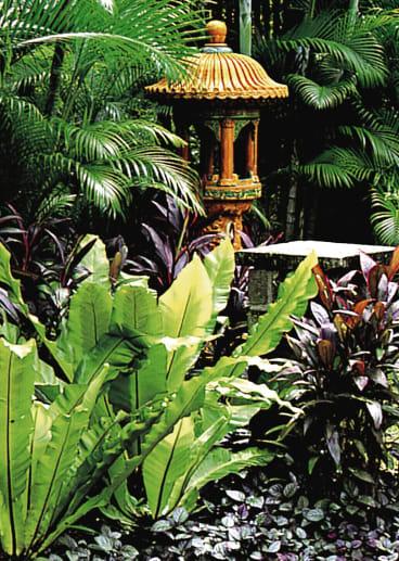 A garden by Made Wijaya from the book <i>Tropical Garden Design</i>.
