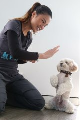Dr Cherlene Lee and her dog Siao Chuwho.