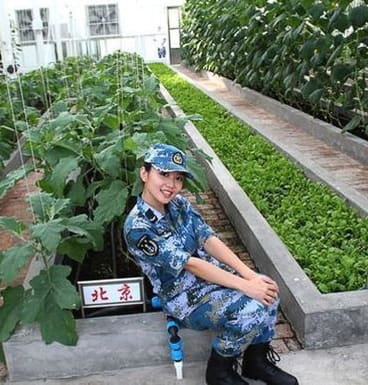 A propaganda image from the Chinese website sina.com shows a Chinese soldier in a greenhouse on Fiery Cross Reef.