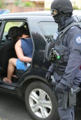 A male is arrested during Operation Appleby raids in Sydney's south-west on Thursday.