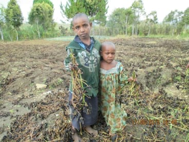 Children at Algi Vill near Lalibu in PNG, an area facing food shortages.